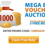 Mega Bid Vouchers on QuiBids - 1,000 & 500 Voucher Bid Packs